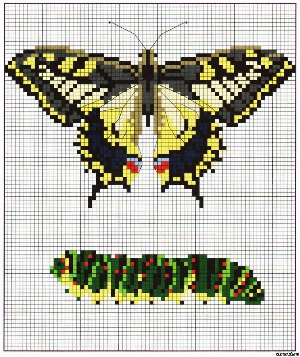 Вышивки крестом схема вышивки бабочки