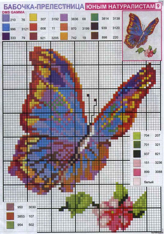Вышивка схема бабочки скачать бесплатно фото 110