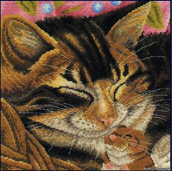 Схема для вышивки крестом Кот