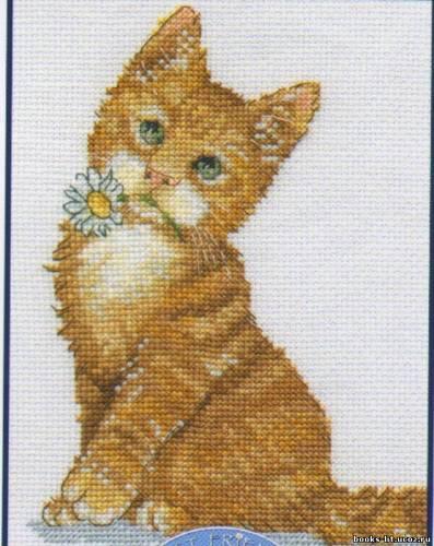 Набор для вышивания Рыжий котенок, DMC К5423 купить в санкт петербурге Шале, Aida 14, Счетный крест.